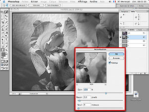 Tutorial Photoshop 7.0 : gestion de la nettete : accentuation en mode Lab
