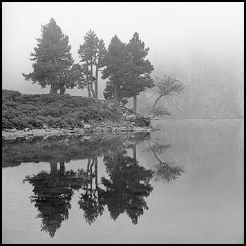 Galerie photo : Paysages et nature, photo Noir et Blanc, PyrŽnŽes, © Vincent LUC